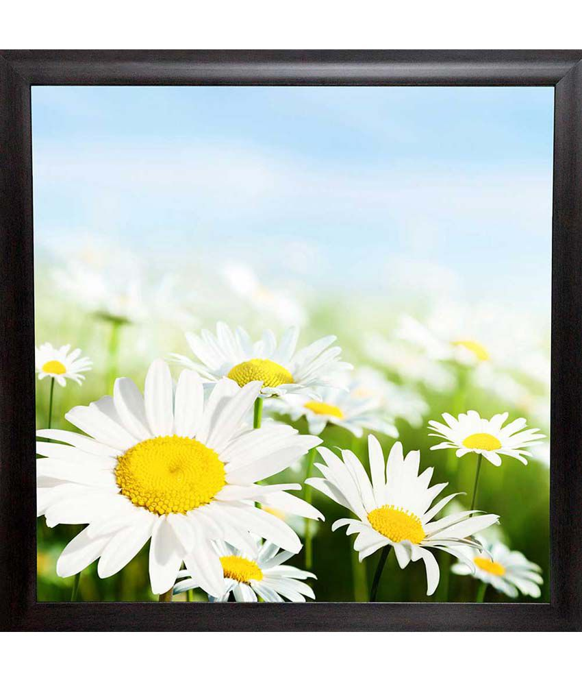 Mataye Graphics White Flower Floral Painting With Frame
