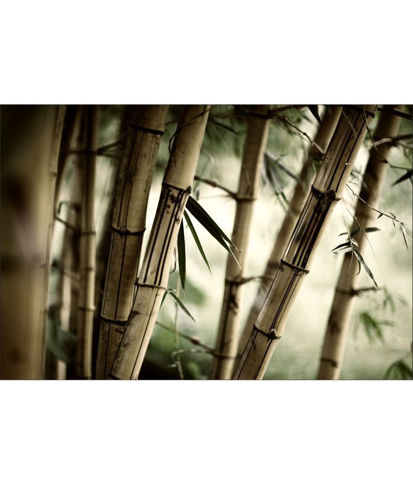 Retcomm Art Digital Print Wall Art With Dry Bamboo Still Life Painting