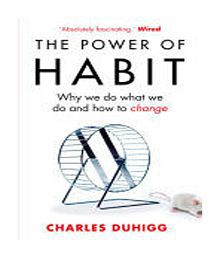 Power Of Habit The Paperback (English)