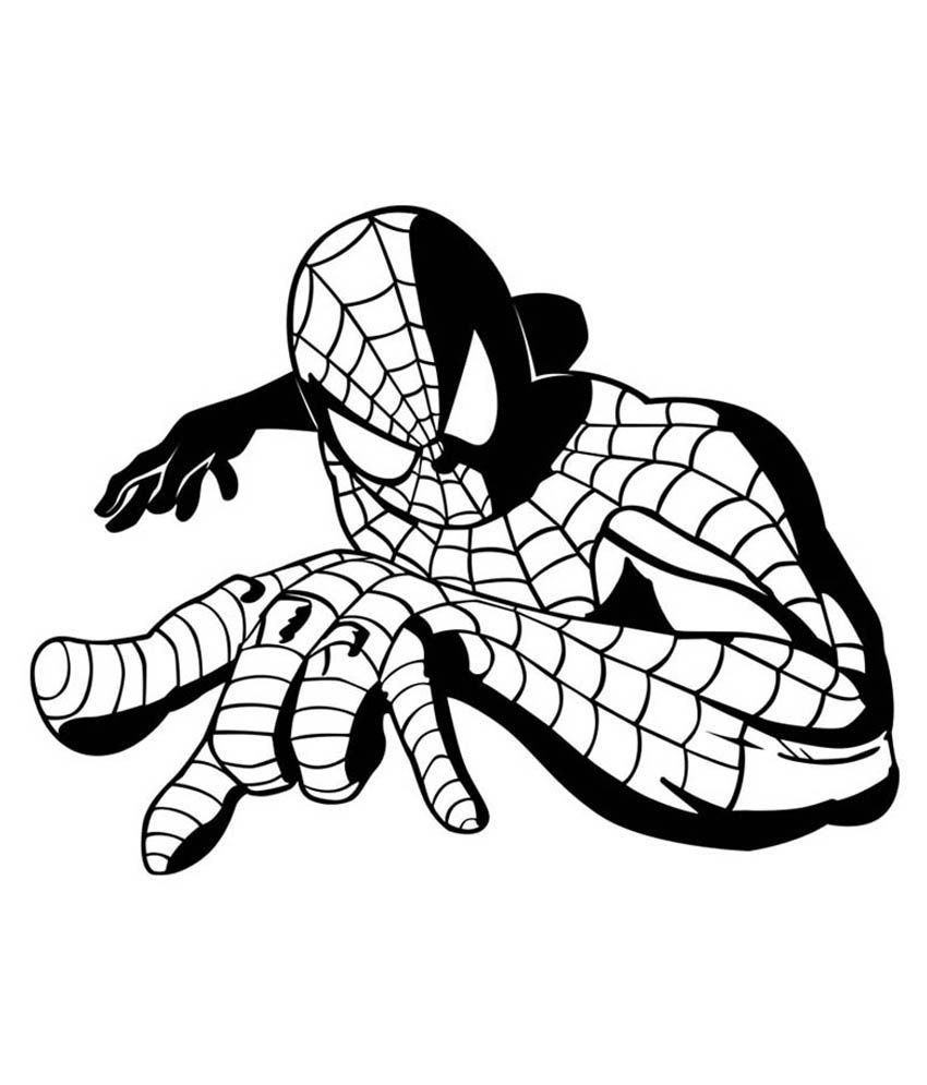 Trends on wall spider man sticker medium buy trends on wall spider man sticker medium online at best prices in india on snapdeal