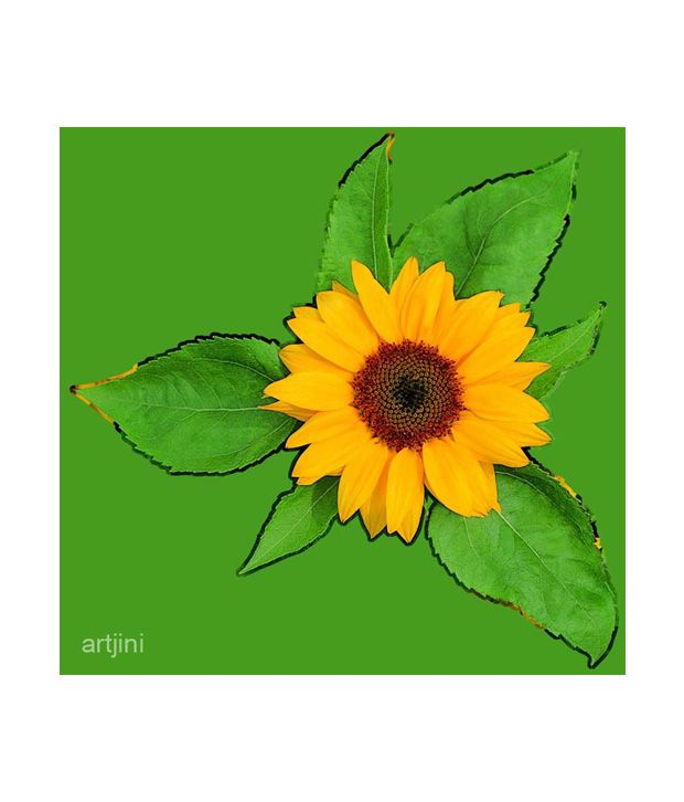 Artjini Sunflower On Green Background Painting