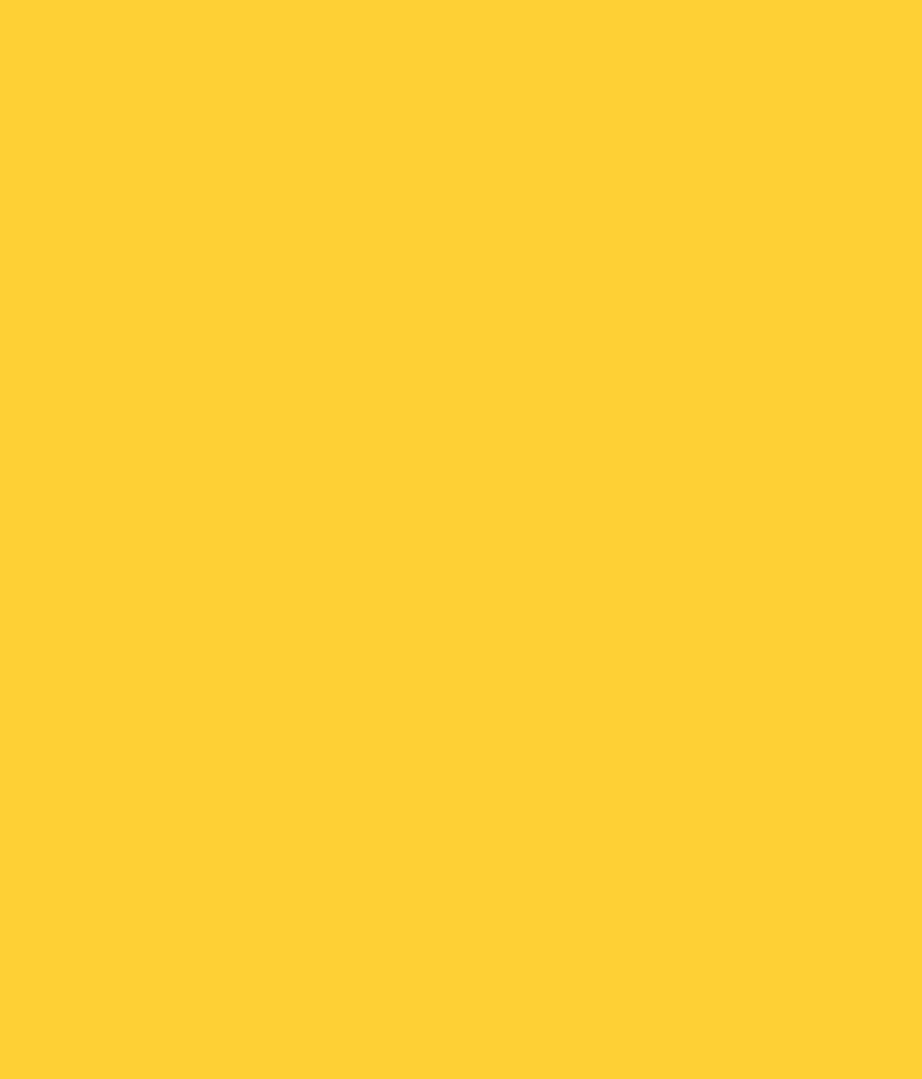 Buy Asian Paints Ace Exterior Emulsion Orange Vision