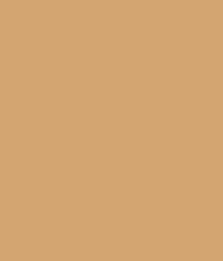 Buy asian paints ace exterior emulsion mexican hills online at low price in india snapdeal - Asian paints exterior emulsion concept ...