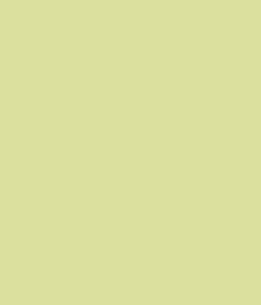 Buy Asian Paints Ace Exterior Emulsion Spring Grass Online At Low Price In India Snapdeal