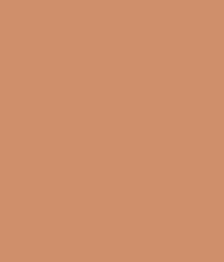 Buy asian paints ace exterior emulsion tawny sky online - Ace exterior emulsion shade cards ...