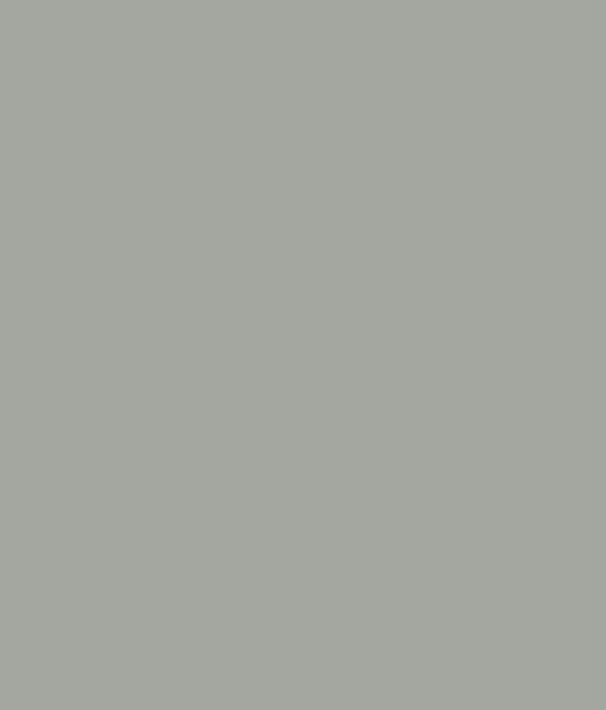 Buy asian paints ace exterior emulsion oxford grey - Ace exterior emulsion shade cards ...