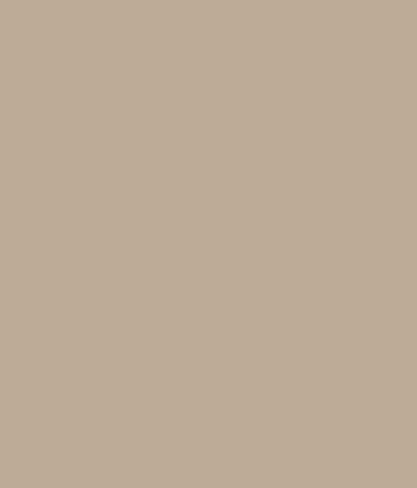 Buy asian paints ace exterior emulsion tropical tan - Ace exterior emulsion shade cards ...