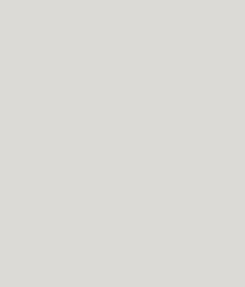 Buy asian paints ace exterior emulsion silver grey - Ace exterior emulsion shade cards ...