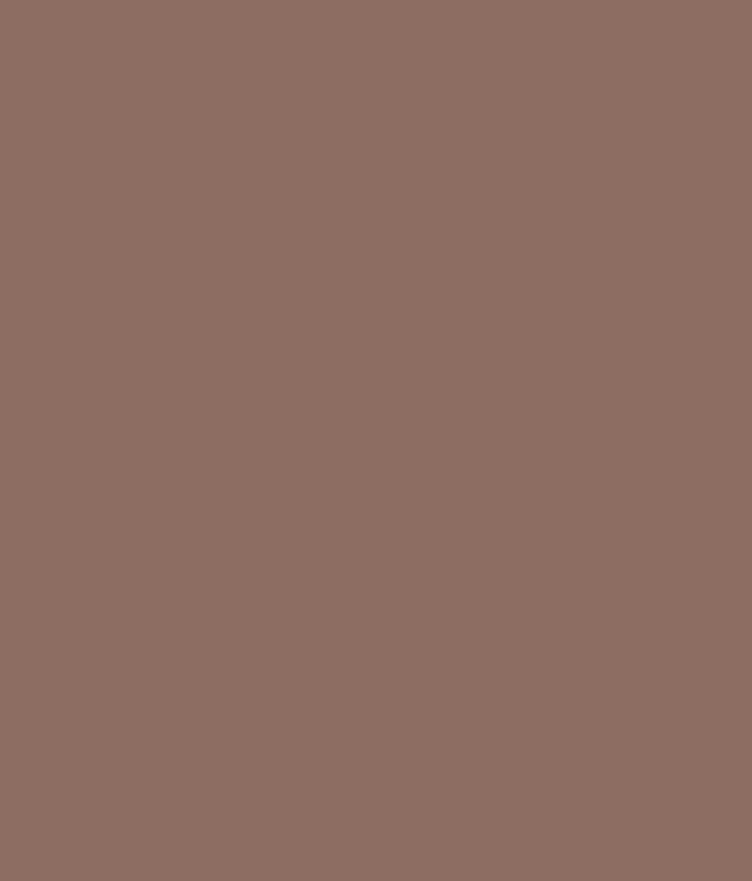 Buy asian paints apex exterior emulsion frosted chocolate online at low price in india snapdeal - Asian paints exterior emulsion concept ...