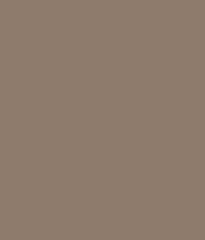 Buy Asian Paints Apex Exterior Emulsion Evening Shade Online At Low Price In India Snapdeal