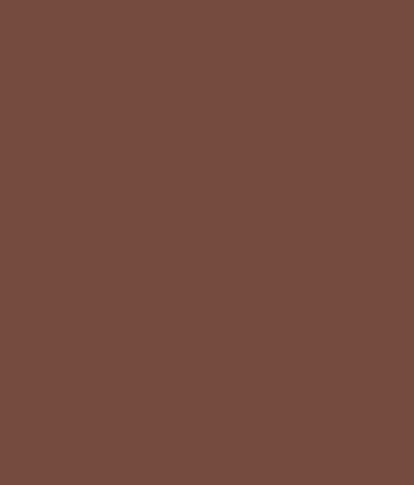Buy Asian Paints Apex Ultima Rich Chocolate Online At Low Price In India Snapdeal