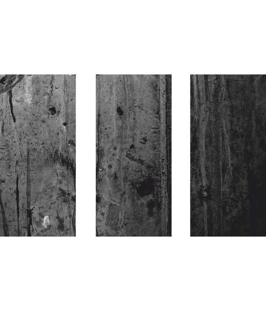 Anwesha's Black Wooden 3 Frame Split Effect Digitally Printed Canvas Wall Painting
