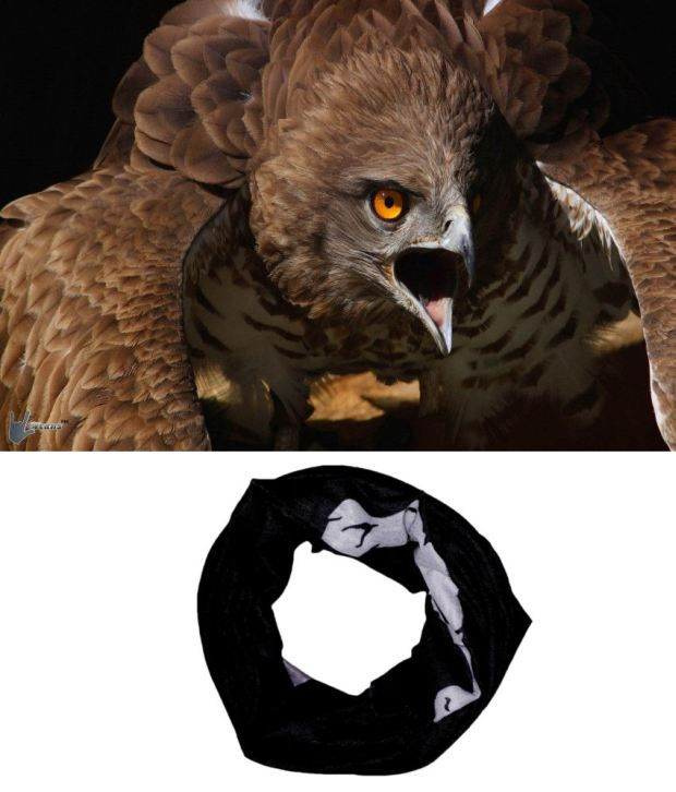Lycans Black And White Head Wrap And Laptop Skin Combo