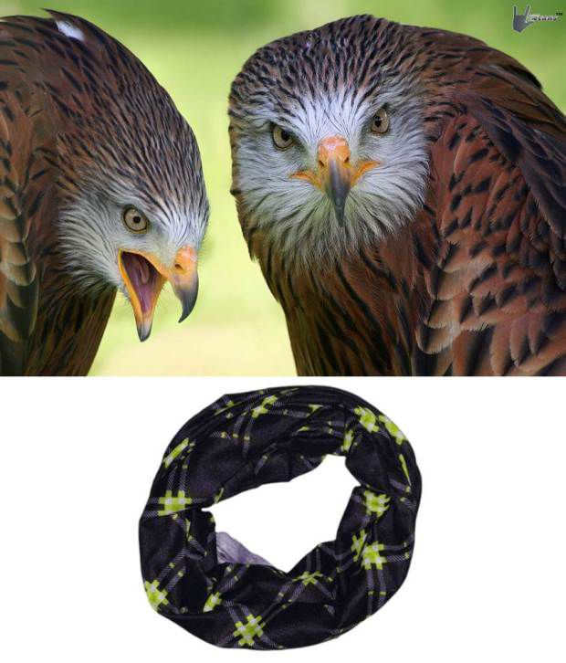 Lycans Black And Green Head Wrap And Laptop Skin Combo
