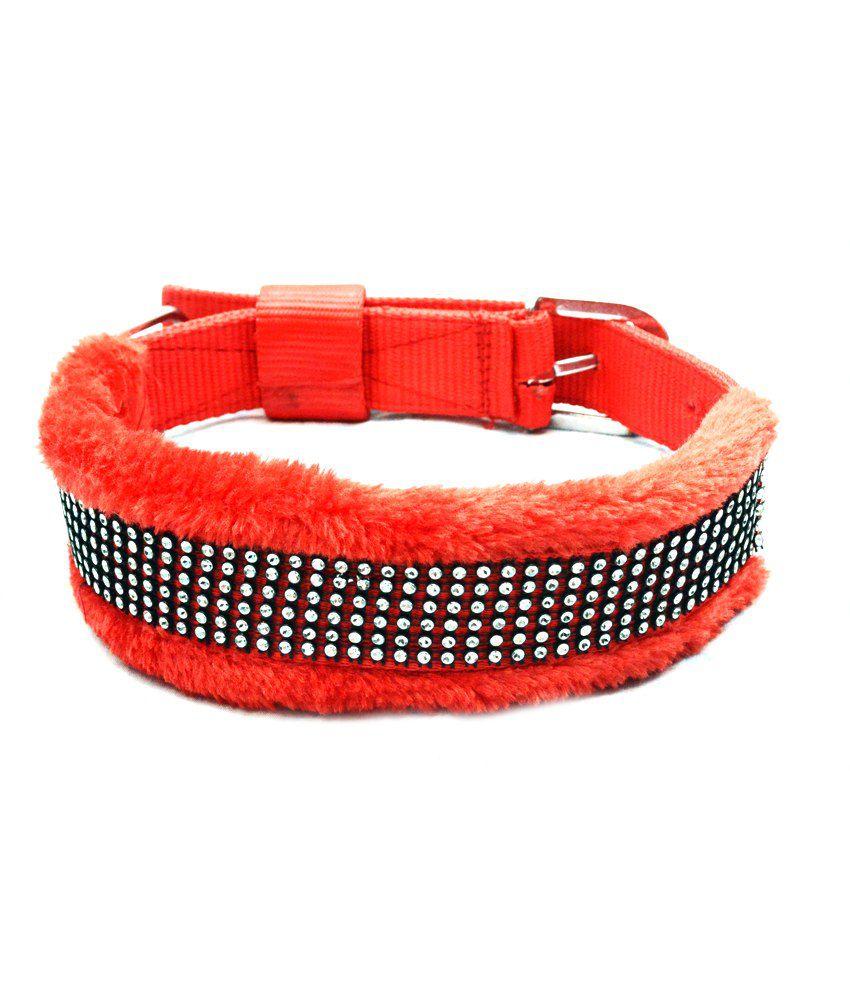 Petshop7 High Quality & Stylish Nylon Dog Collar - Large (Red)