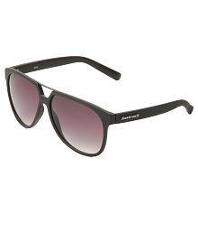 Fastrack P240BK1 Purple Wayfarer Sunglasses