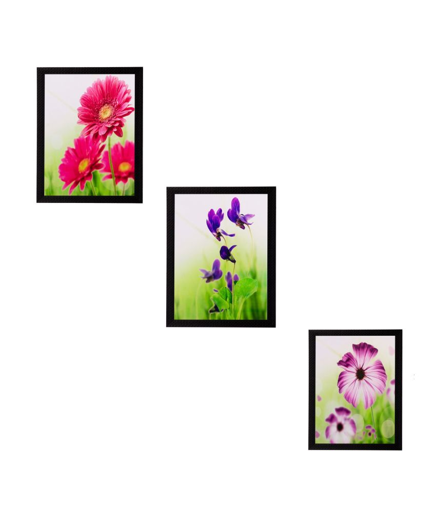 eCraftIndia Set of 3 Floral Matt Textured Framed UV Art Print