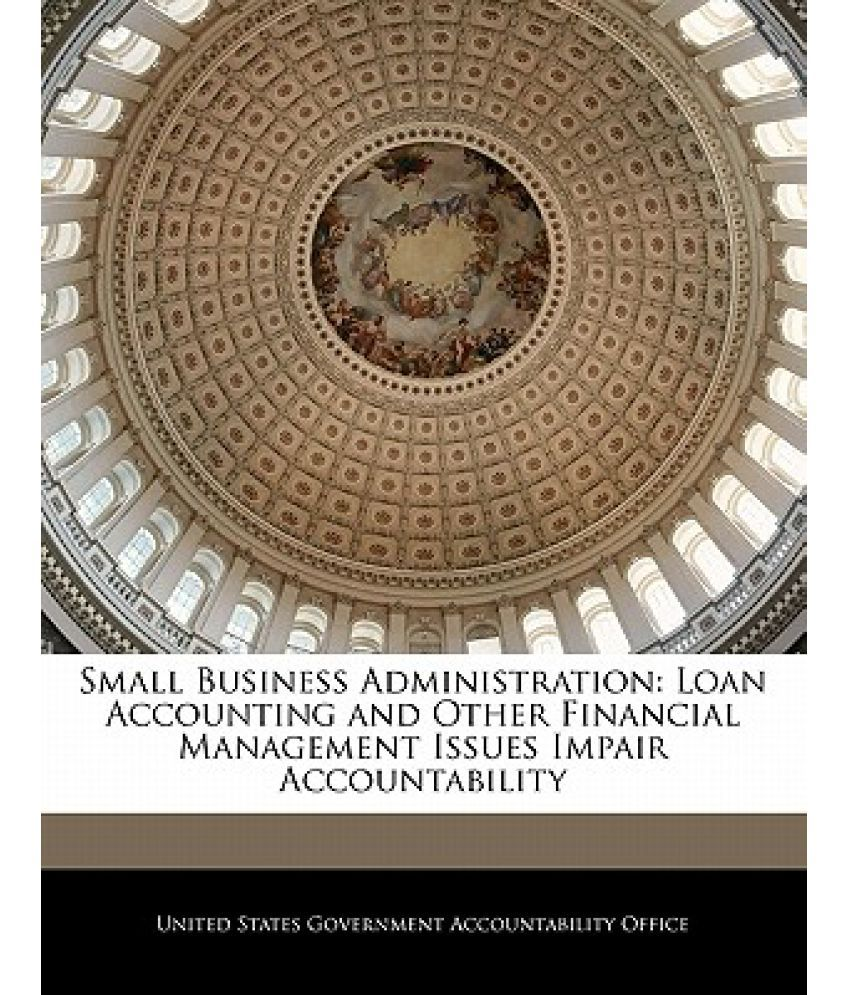Small Business Administration: Loan Accounting and Other Financial Management Issues Impair Accountability