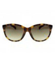 Calvin Klein Cat Eye Sunglasses  calvin klein sunglasses calvin klein sunglasses online at