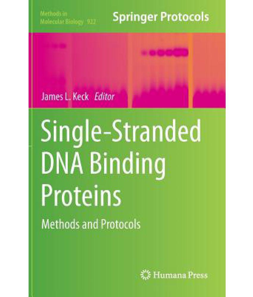 Single-Stranded DNA Binding Proteins: Buy Single-Stranded