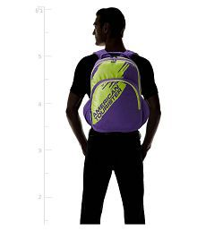 American Tourister purple Backpack