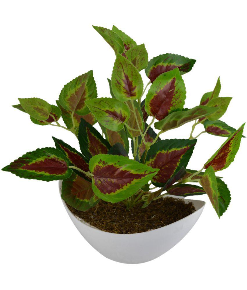 The Fancy Mart Artificial Flower Plant Multicolour Greens With Pot Plastic