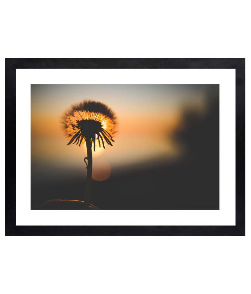 Craftsfest Amazing photography of flower Canvas Painting With Frame Single Piece