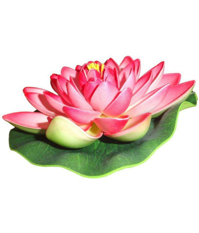 Caryn Lotus Floating Flowers Multicolour Buy Caryn Lotus Floating