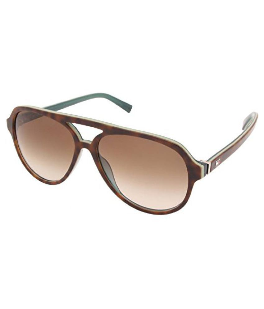 9f53fa896e86 ... Tommy Hilfiger Brown Aviator Sunglasses ( (7952 Hav/Blu C3 59 S|59 ...