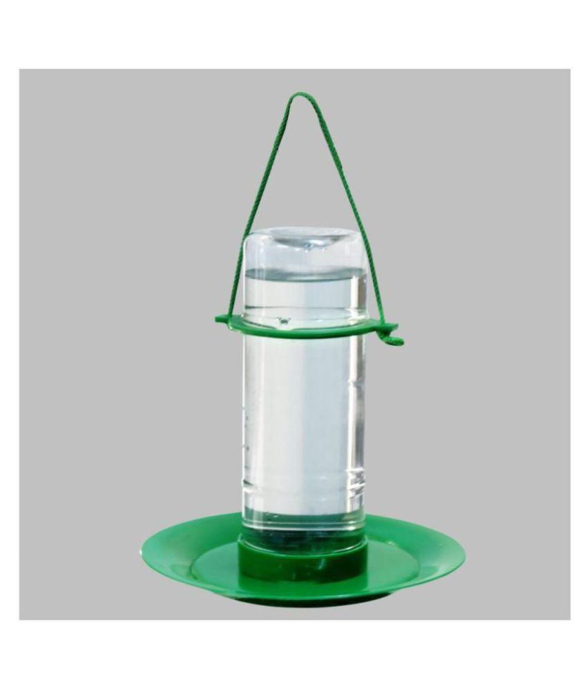 Amijivdaya Medium Bird Water Feeder (1 Liter)