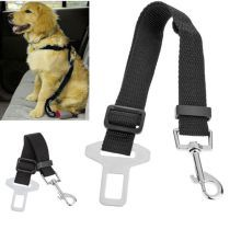 Dog Belts & Collars