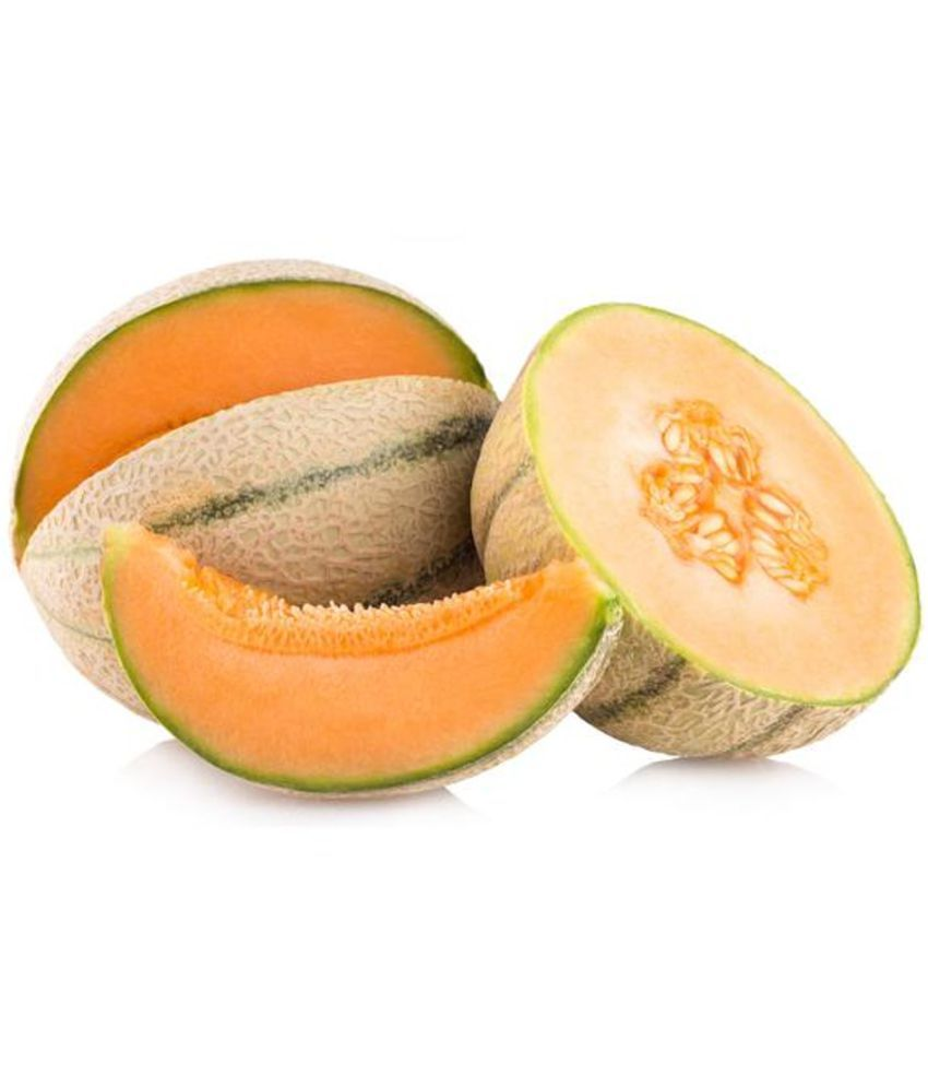 Musk Melon Striped Orange Flesh Cantaloupe Seeds Pack Of 50 Kharbooja Seeds Buy Musk Melon Striped Orange Flesh Cantaloupe Seeds Pack Of 50 Kharbooja Seeds Online At Low Price Snapdeal Hotel is located in 2 km from the centre. musk melon striped orange flesh cantaloupe seeds pack of 50 kharbooja seeds
