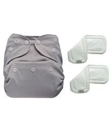 Bumberry Reusable Diaper Cover + 2 Wf Insert (Grey 3 - 36 Months)