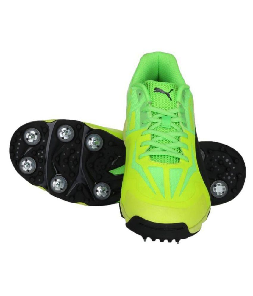 3812623e829520 Puma evoSPEED 1.5 Cricket Spike Green Cricket Shoes - Buy Puma ...