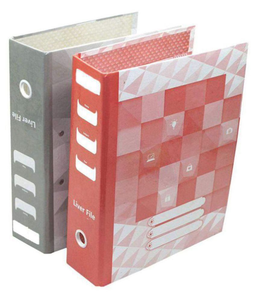 Corporate Series  Liver Arch File - Assorted Colors - (Pack Of 4 Pcs)