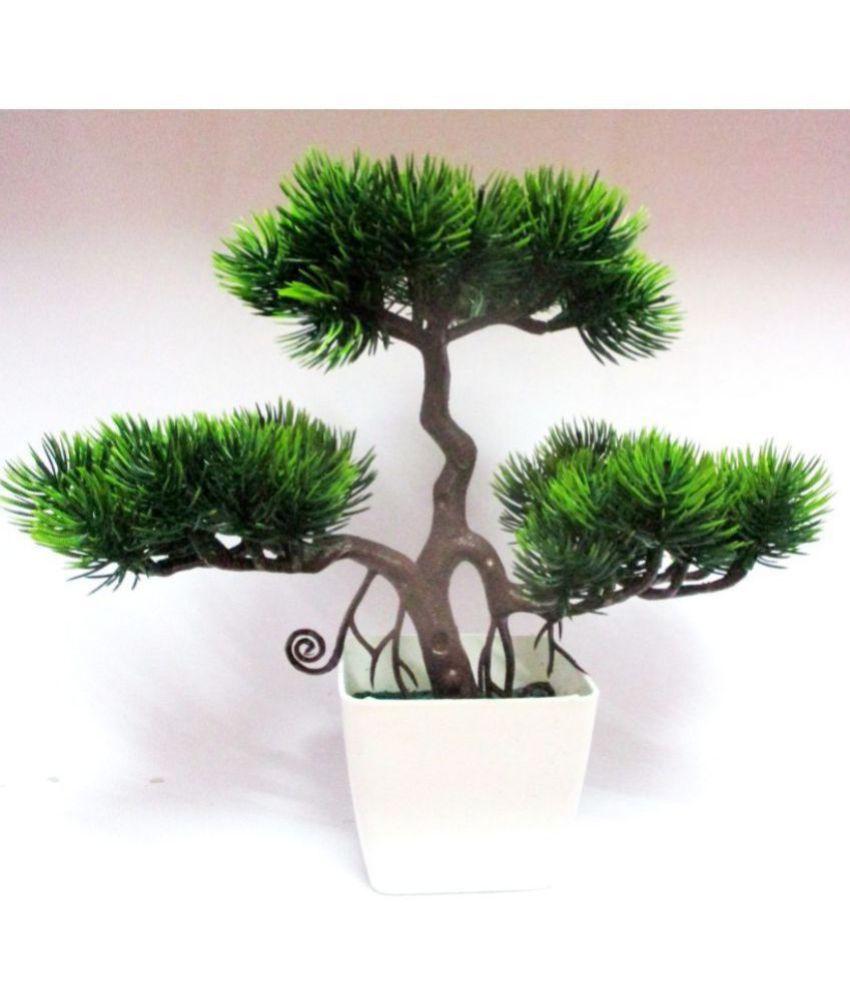 Green plant indoor Artificial wild Bonsai Plants Multicolour Bonsai Plastic - Pack of 1