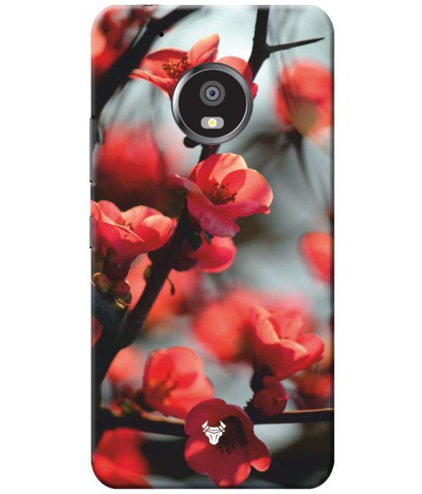 Motorola Moto G5 Printed Cover By Robobull