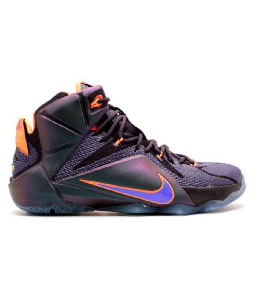 Nike Lebron X11 Instinct Multi Color