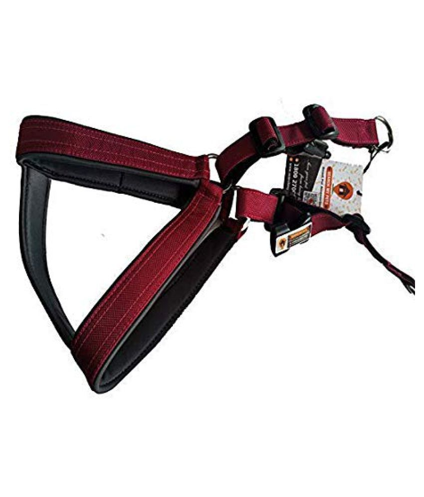 Smart Dog Harness Maroon Color With Leash 1 Inch
