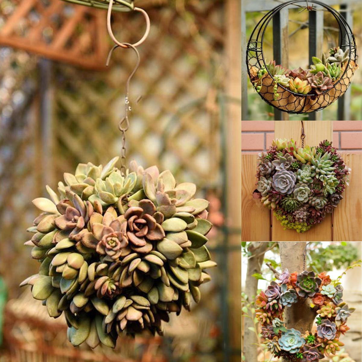Christmas Succulent Planters.Hanging Flower Pot Iron Wall Succulent Planters Rustic Plant Holder Home Decor