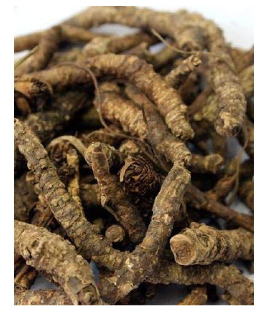 DDRS Kutki | Katuki |  Picrorhiza Kurroa Raw Herbs 50 gm Pack Of 1