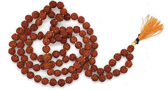 Spherulemuster Rudraksha Pack of 1