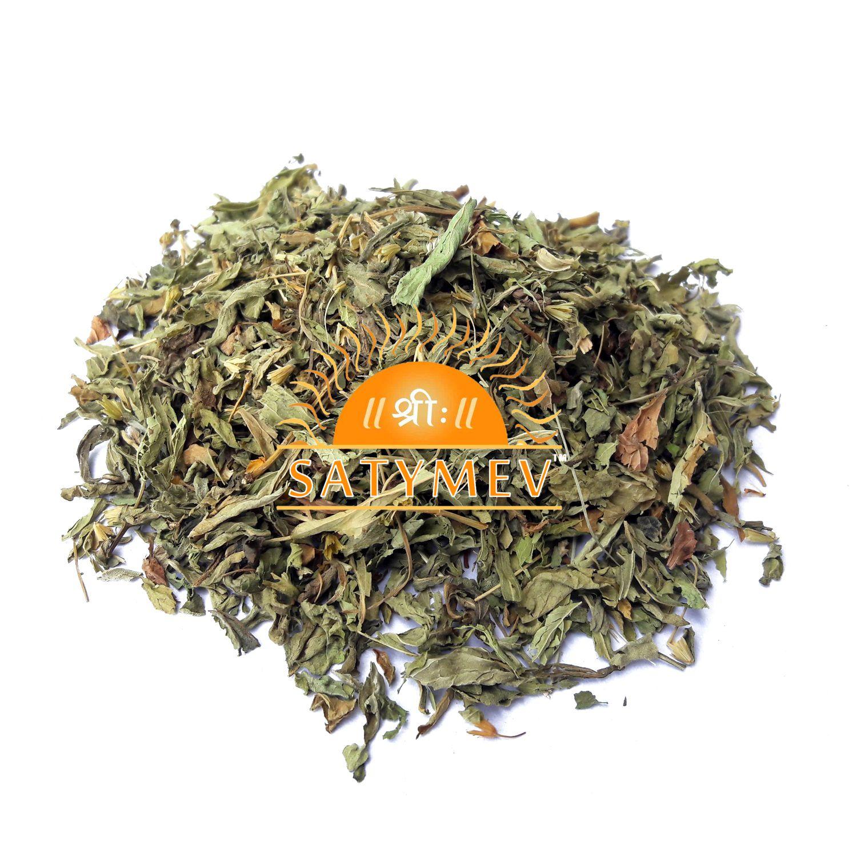 SriSatymev Stevia Leaves / Madhu Tulsi Raw Herbs 100 gm Pack Of 1