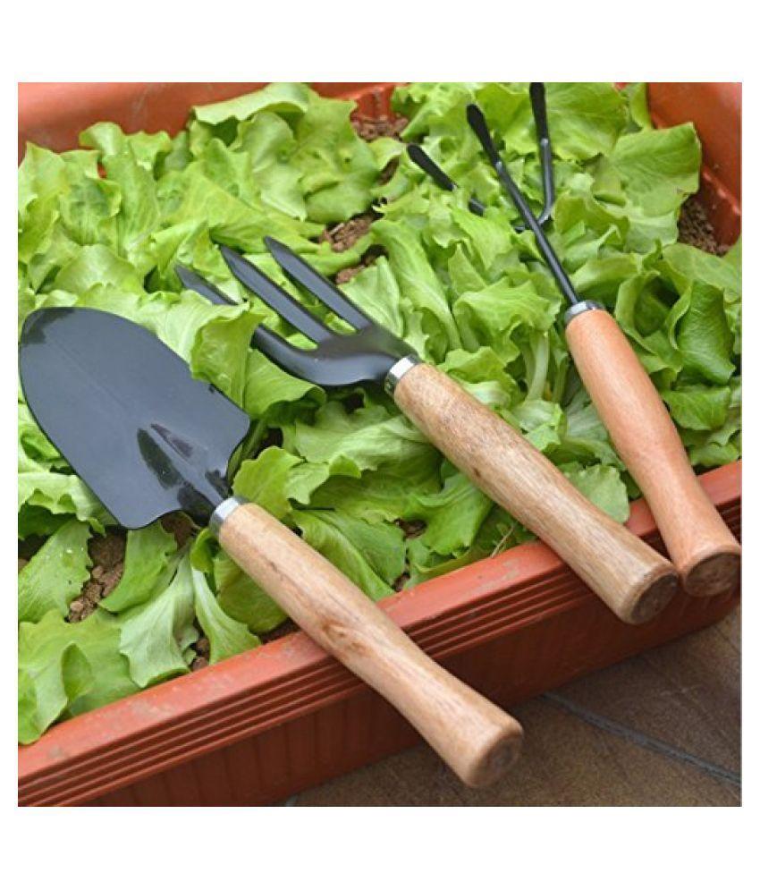 Urancia® 3Pcs Garden Hand Tools Set Iron Gardening Shovel Spade Rake Trowel Wood Handle One Piece