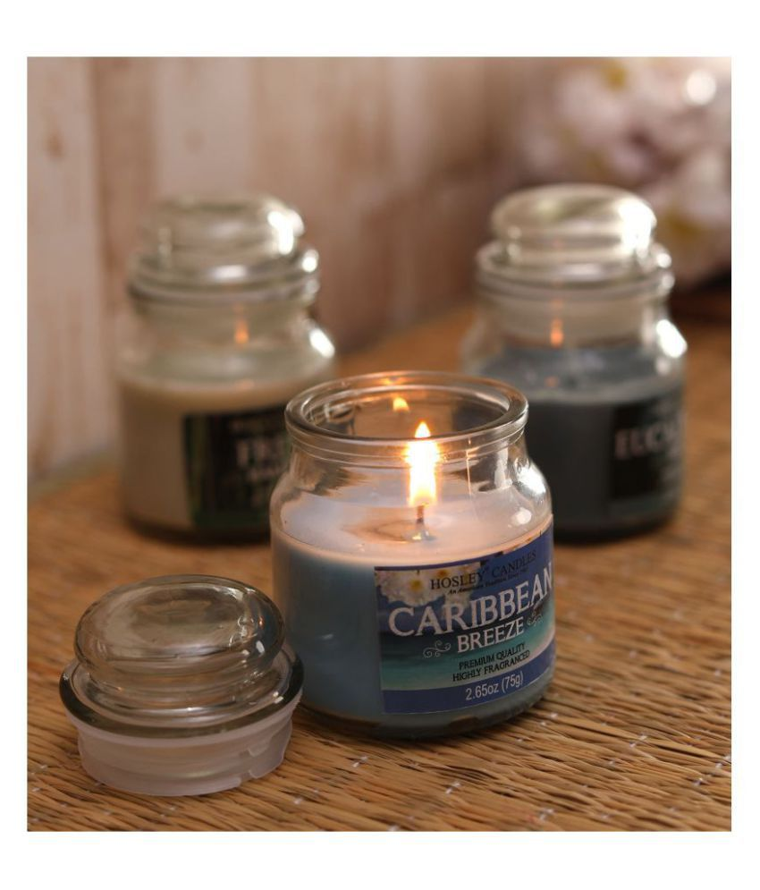 Hosley Multicolour Jar Candle - Pack of 3