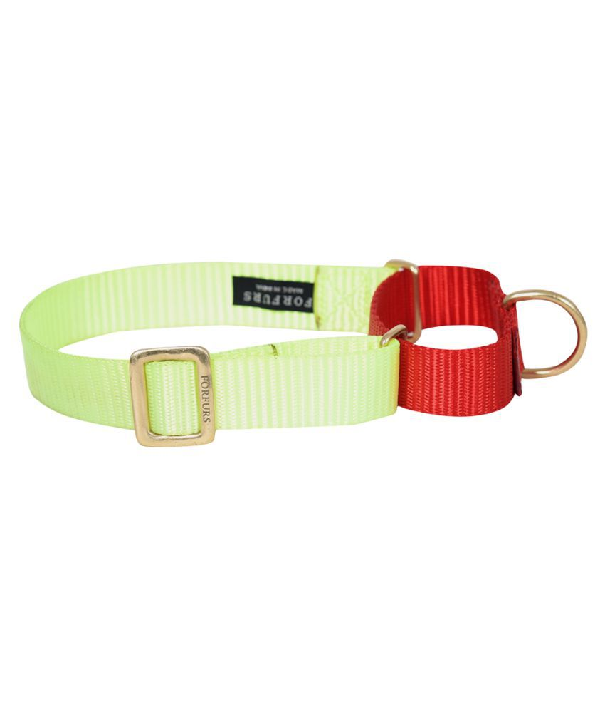 FORFURS Martingale Collar with Brass Fittings (M, Lime Green x Tomato Red)