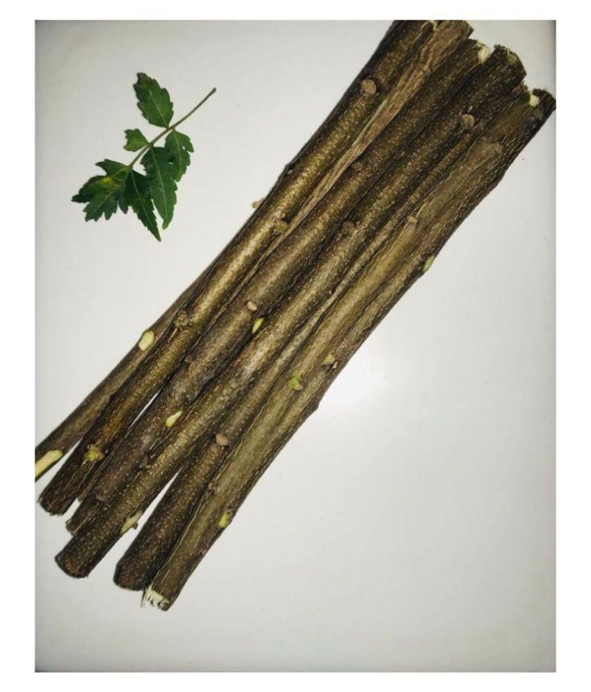 GUDBUN FASHION Denture Brush Pack of 30