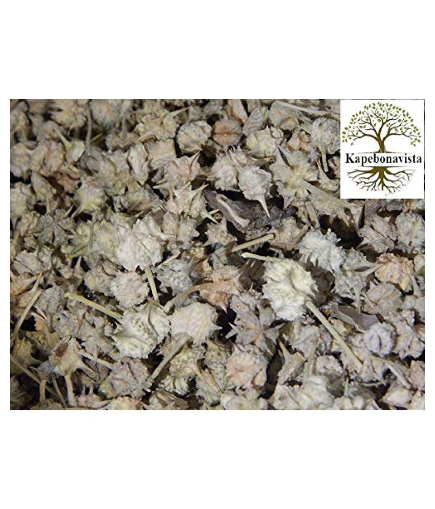 Kapebonavista Dried Gokharu Tribulus Terrestirs 250gm Raw Herbs 1 no.s Pack Of 1