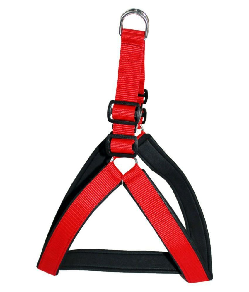 Petshop7 Nylon Rubber Padded Red Adjustable Dog Harness & Leash Rope 1 Inch For Medium Pet (Chest Size adjustable : 25- 30inch)