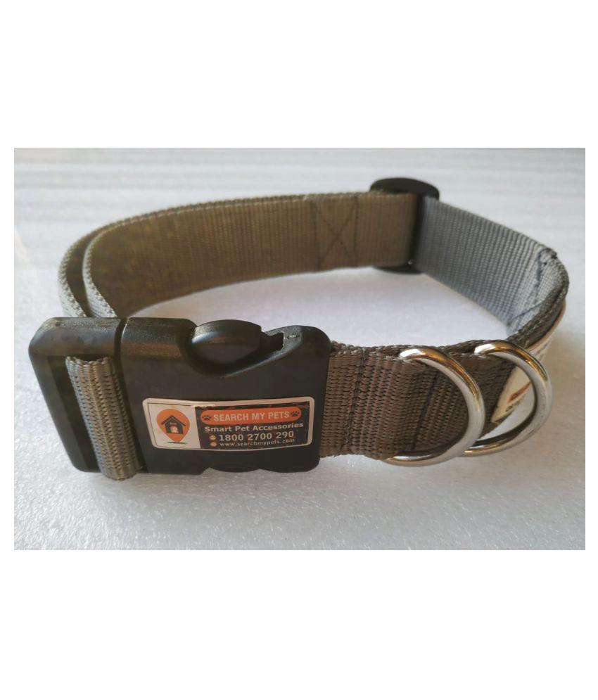 Anti-Lost Dog's Collar, Best Comfortable Grey Color Pet Collar